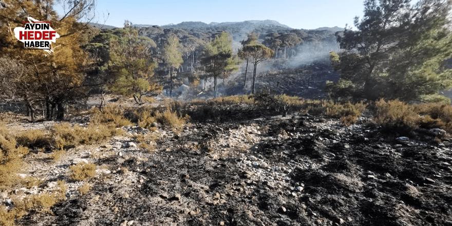 Arazide çıkan yangın, ormana sıçramadan söndürüldü