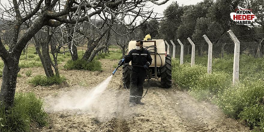 Germencikli çiftçiler çalışmalarını sürdürüyor