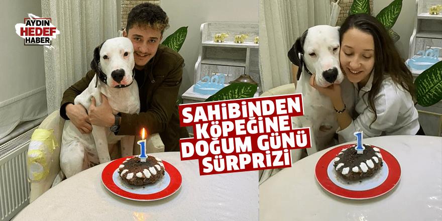 Sahibinden köpeğine doğum günü sürprizi