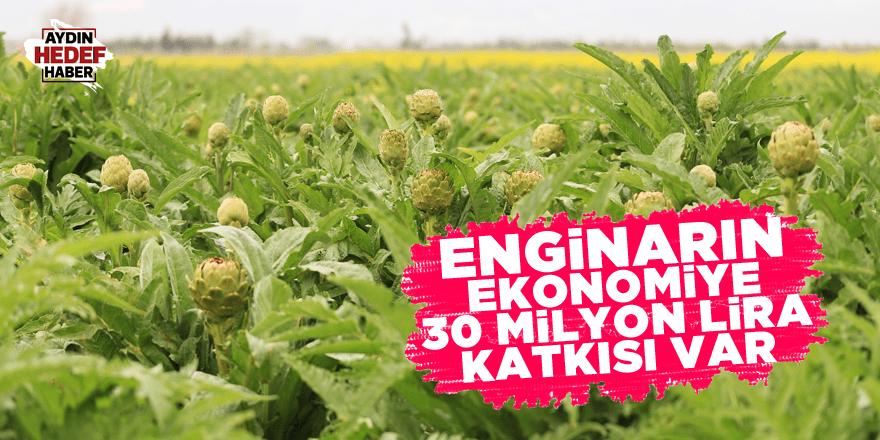 Enginarın ekonomiye 30 milyon lira katkısı var