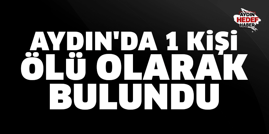 Aydın'da 1 kişi ölü olarak bulundu