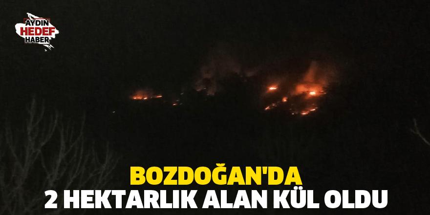 Bozdoğan'da 2 hektarlık alan kül oldu