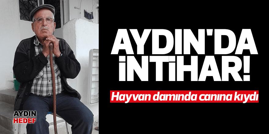 Aydın'da yaşlı adam intihar etti