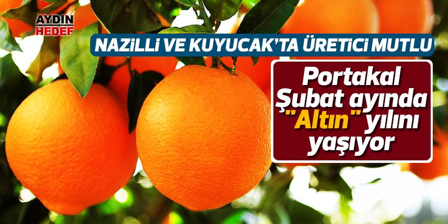"""Portakal, Şubat ayında """"Altın"""" yılını yaşıyor"""