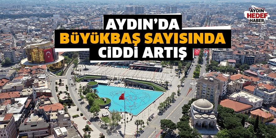 Aydın'da büyükbaş sayısında ciddi artış