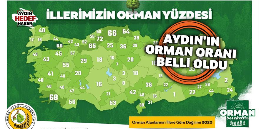 Aydın'ın orman oranı belli oldu