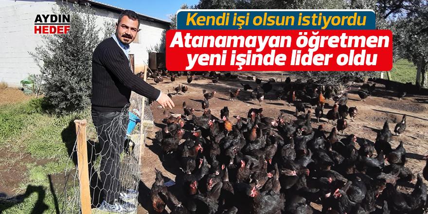 Atanamayan öğretmen tavuk çiftliği kurdu