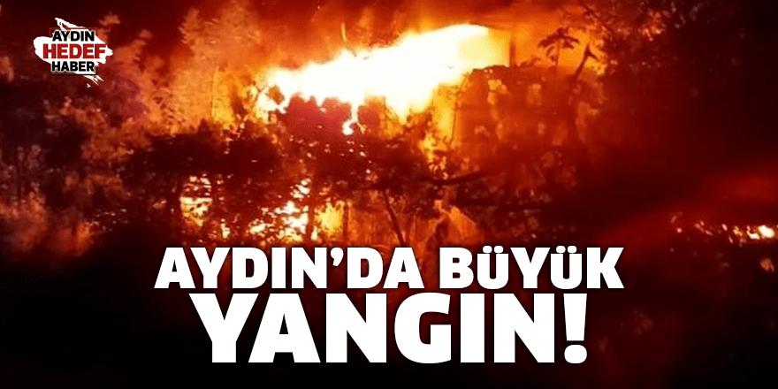 Aydın'da büyük yangın