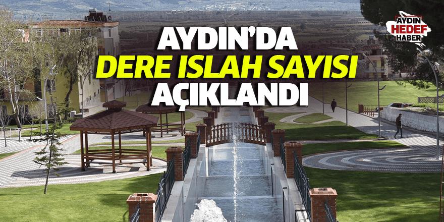 Aydın'da dere ıslah sayısı açıklandı
