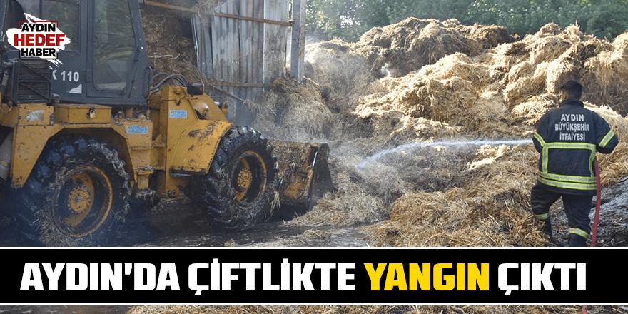Aydın'da çiftlikte yangın çıktı