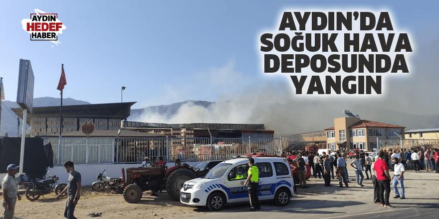Aydın'da soğuk hava deposunda yangın