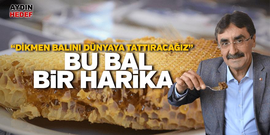 Karacasu Dikmen kekik balını dünya tadacak