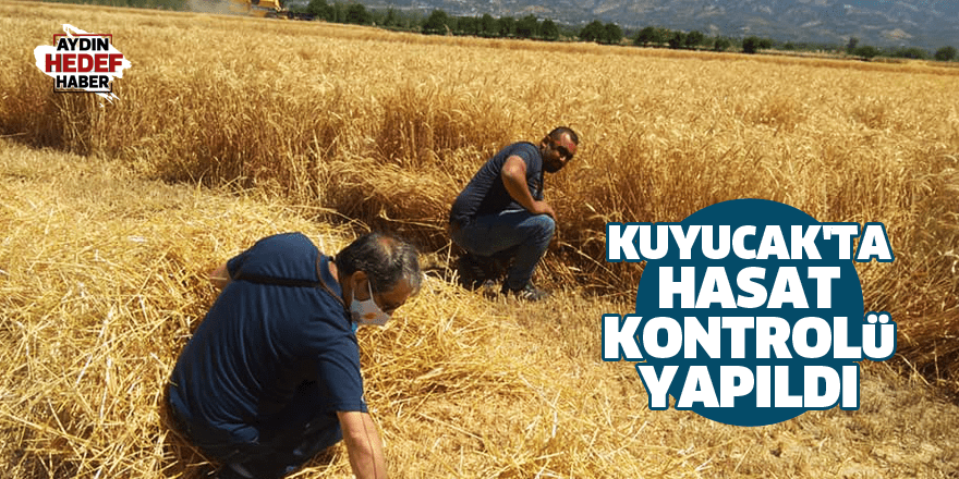 Kuyucak'ta hasat kontrolü yapıldı