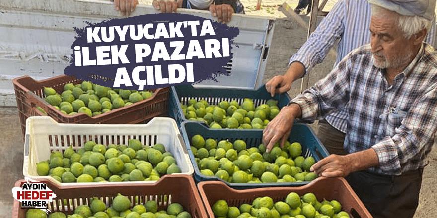 Kuyucak'ta ilek pazarı açıldı