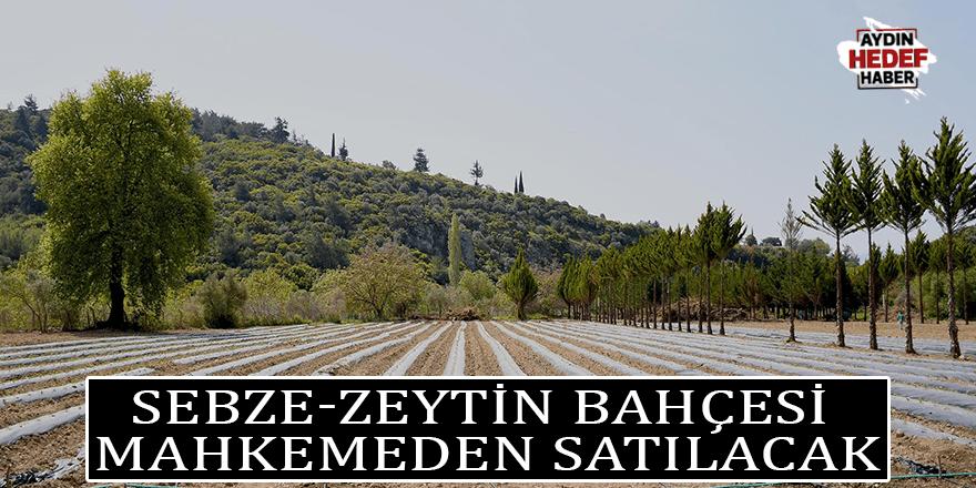Sebze-zeytin bahçesi mahkemeden satılacak