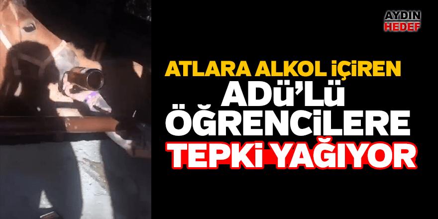Atlara içki içiren ADÜ'lü öğrenciler Antalya'yı ayağa kaldırdı
