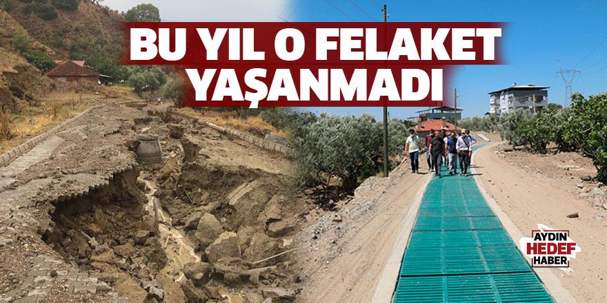 Kuyucak'ta bu yıl o felaket yaşanmadı