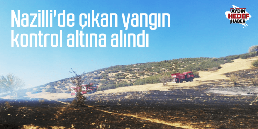 Nazilli'de çıkan yangın kontrol altına alındı