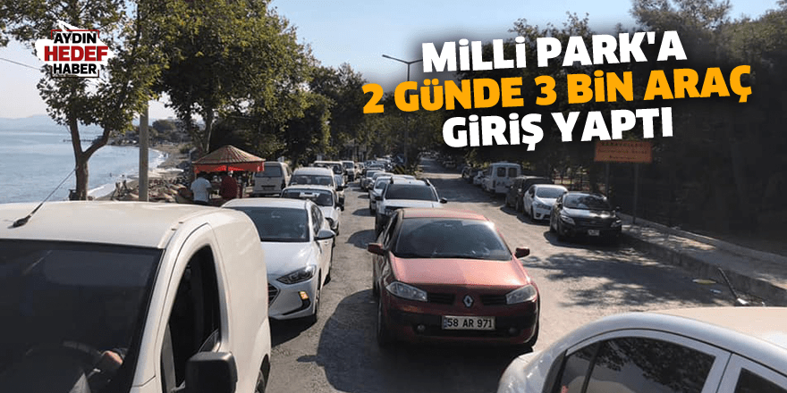 Aydın'da Milli Park'a 2 günde 3 bin araç giriş yaptı