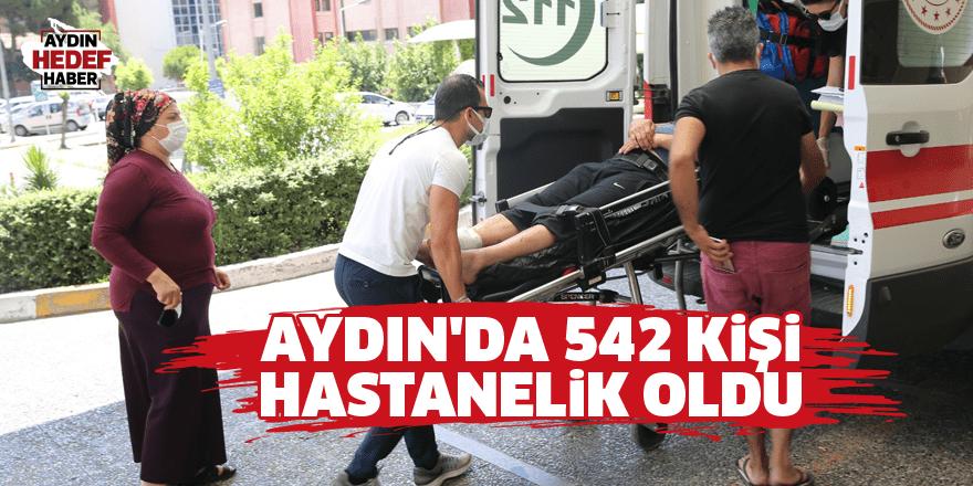 Aydın'da 542 kişi hastanelik oldu