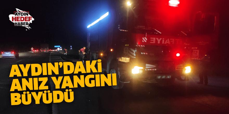 Aydın'daki anız yangını büyüdü