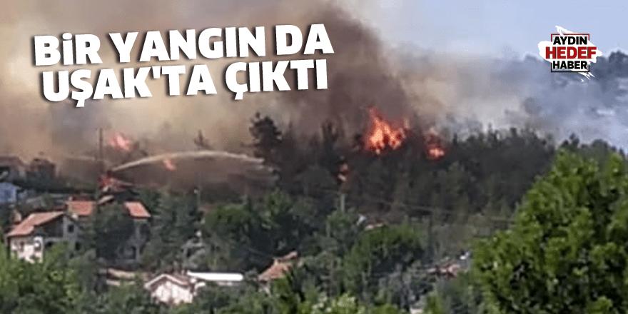 Bir yangın da Uşak'ta çıktı