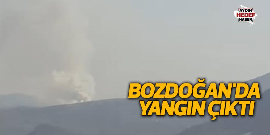 Bozdoğan'da yangın çıktı