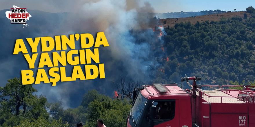 Aydın'da yangın başladı