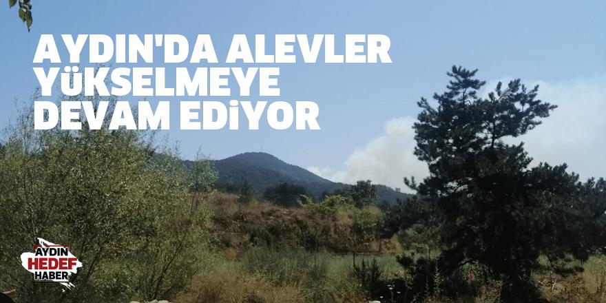 Aydın'da alevler yükselmeye devam ediyor