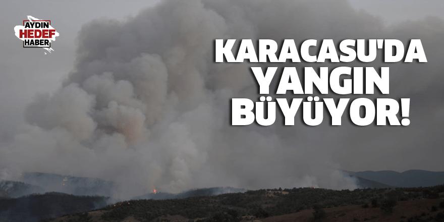 Karacasu'da yangın büyüyor!