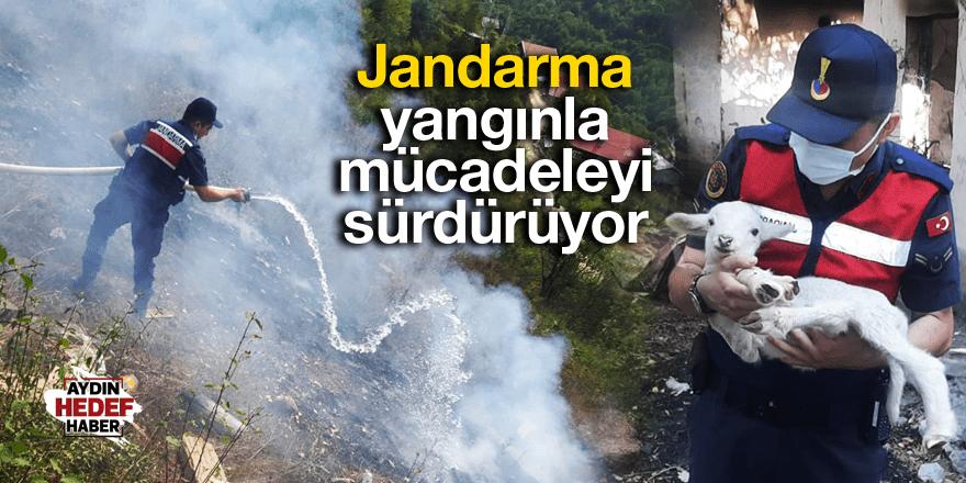 Jandarma yangınla mücadeleyi sürdürüyor