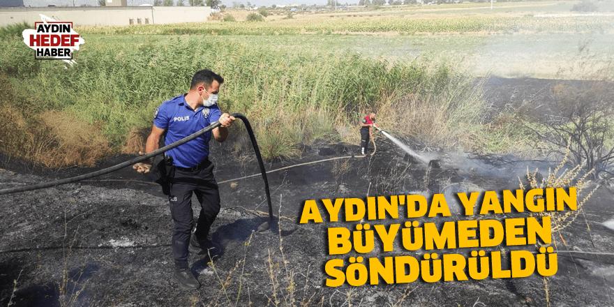 Aydın'da yangın büyümeden söndürüldü