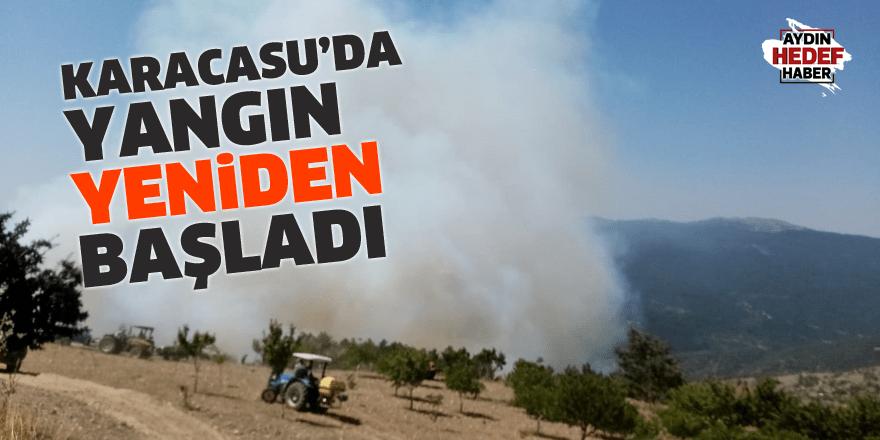 Karacasu'da yangın yeniden başladı