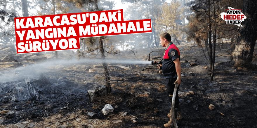 Karacasu'daki yangına müdahale sürüyor