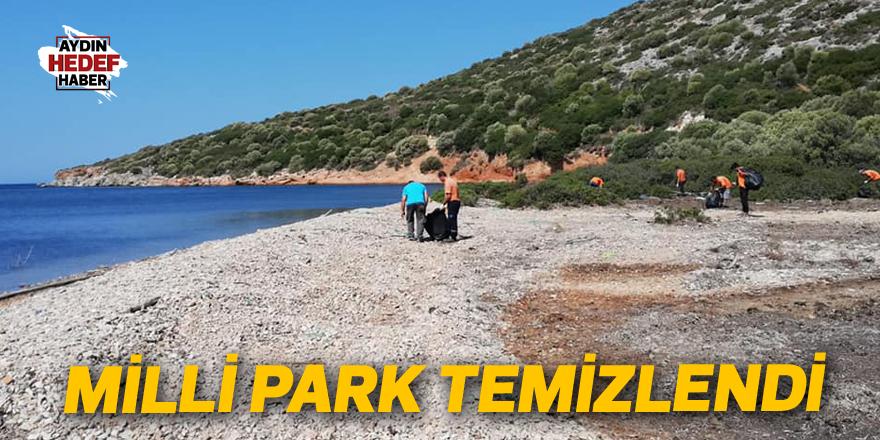 Milli Park temizlendi