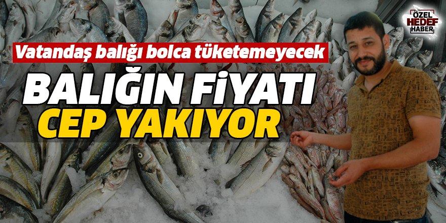 Balığın fiyatı cep yakıyor