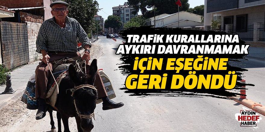 Trafik kurallarına aykırı davranmamak için eşeğine geri döndü