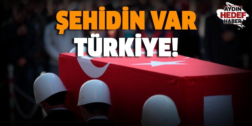 Tunceli'de bir uzman çavuş şehit düştü