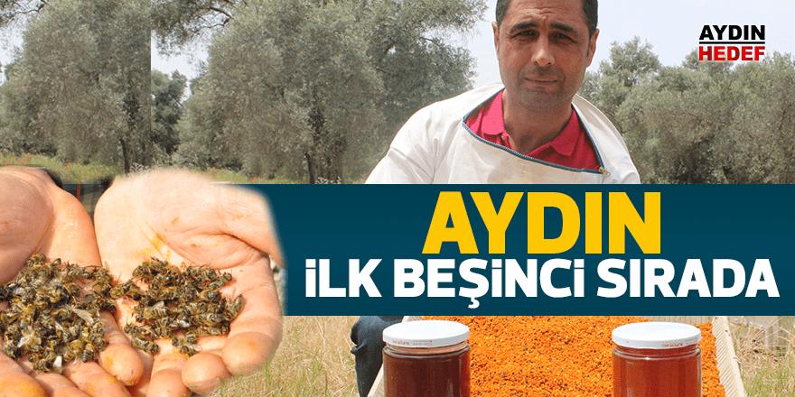 Aydın bal üretiminde Türkiye'de ilk beşte