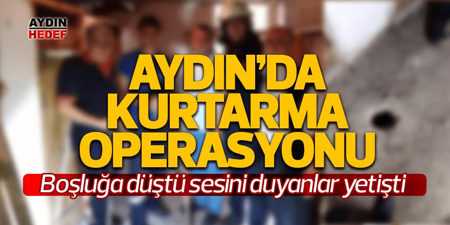 Aydın'da kedi kurtarma operasyonu