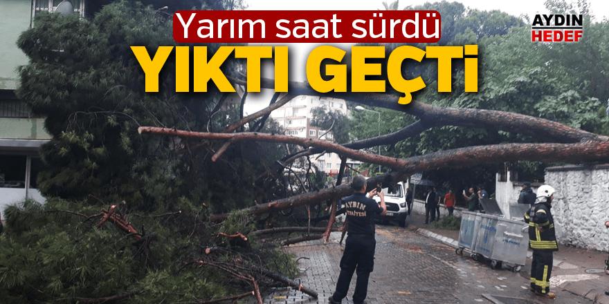 Aydın'da fırtınadan kalanlar