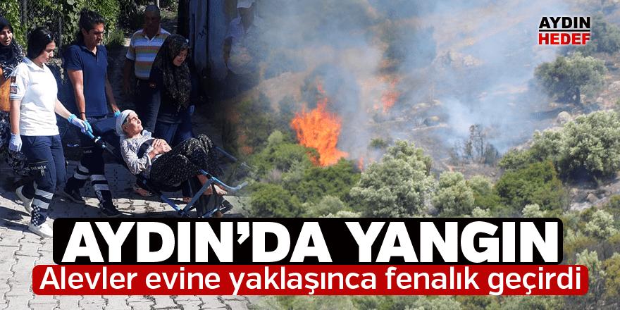 Aydın'da çam ve zeytin ağaçlarının bulunduğu alanda yangın