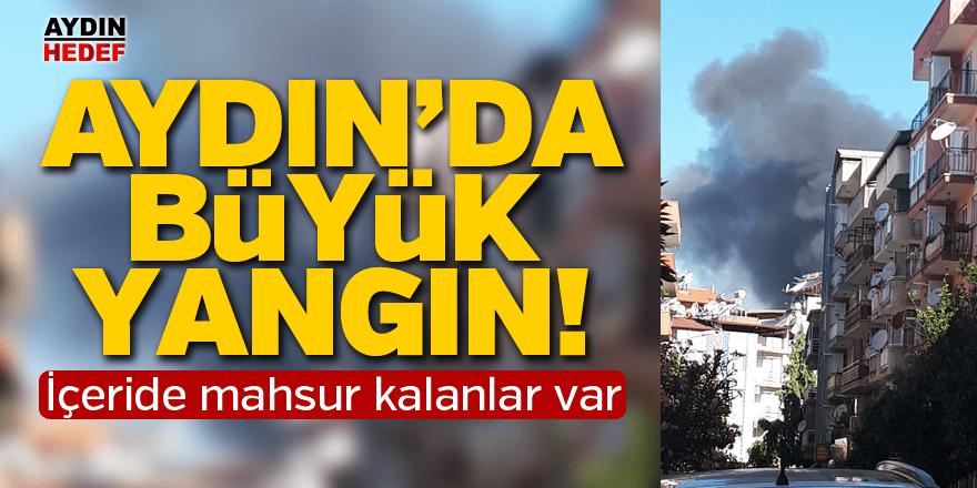 Aydın'da büyük yangın!