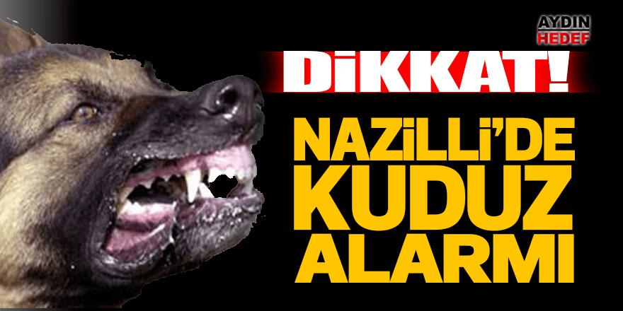 Nazilli'de kuduz alarmı