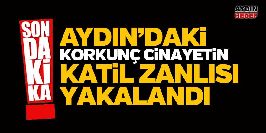 Aydın'da cinayetin zanlısı yakalandı