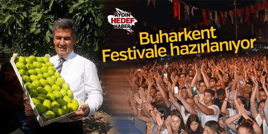 Buharkent festivale hazırlanıyor
