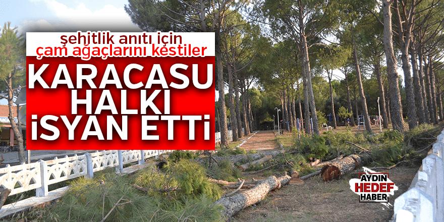Karacasulular kesilen çam ağaçlarına isyan etti