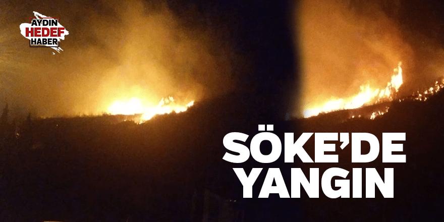 Söke'de makilik alanda yangın