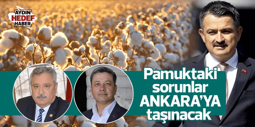 Pamuktaki sorunlar Ankara'ya taşınacak