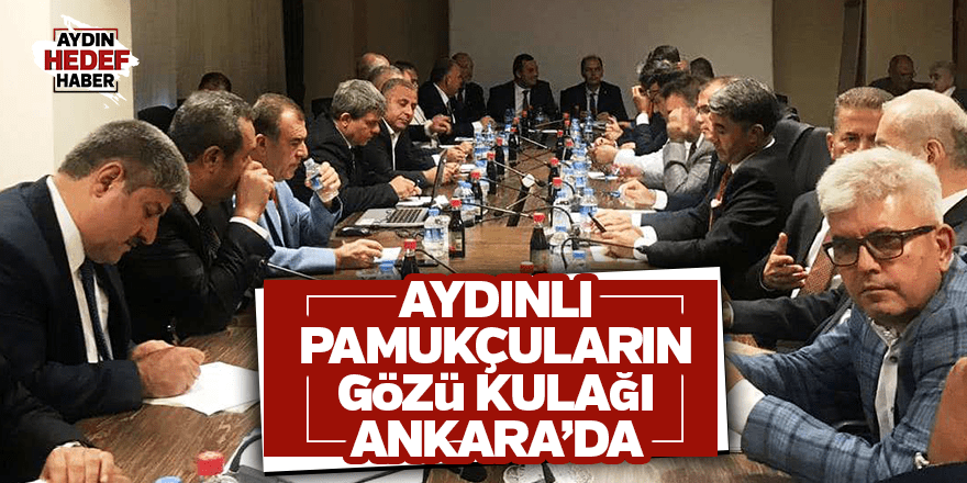 Aydınlı pamukçuların gözü kulağı Ankara'da